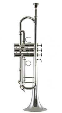 Bb Trumpet 8500SP